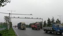 """郑州这10处""""电子眼""""能揪尾气超标车 全国领先"""
