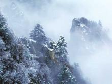 三门峡:皑皑枝上雪