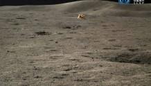 500天!小兔子和嫦娥在月背已经待了500天啦!